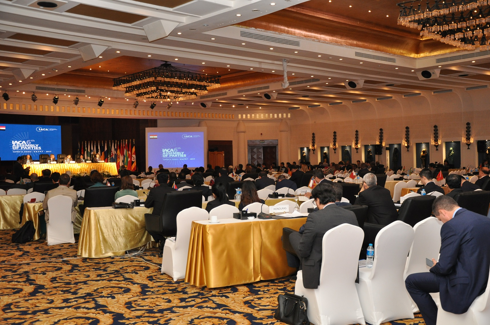 Assembly of Parties: Update from Sharm El Sheikh
